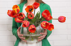 Woman holds a vase of tulips Stock Image