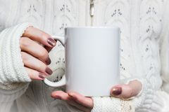 Woman holds white mug in hands. Design Mockup for winter holidays.  royalty free stock images