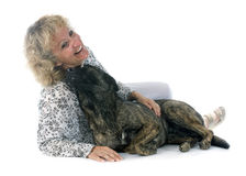 Woman and Holland Shepherd Stock Photos