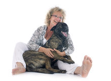 Woman and Holland Shepherd. Portrait of an holland shepherd with his owner in a studio Royalty Free Stock Photography
