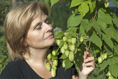 Woman with hop plant Stock Images