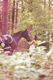 Woman and horse Royalty Free Stock Photography