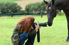 Woman and horse. Woman while taking a photo of a horse staying side by side close royalty free stock images