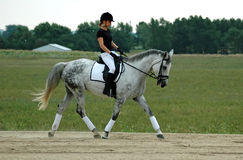 Woman and Horse. Woman riding grey horse in dressage arena Stock Images