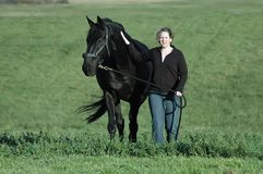 Woman and  horse. Woman and black hanovarian horse walking in green field Stock Photo