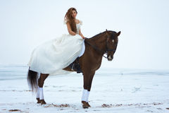 Woman on a horse royalty free stock image