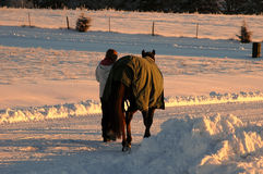 Woman Horse And Snow Stock Photo