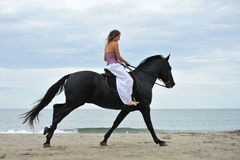 Woman and  horse on the beach. Beautiful black  horse on the beach and beautiful woman Royalty Free Stock Images