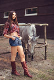 Woman and Horse. Casual Sexy Style Stock Photography