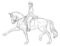 Woman horse dressage. Illustration silhouette Royalty Free Stock Photography