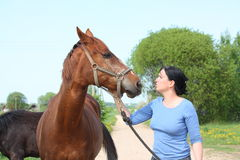 Woman and horse portrait Royalty Free Stock Images