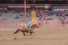 Woman and horse race to finish line at barrel racing competition. Williams Lake, British Columbia/Canada - June 30 2016: woman and horse race to the finish line stock photos