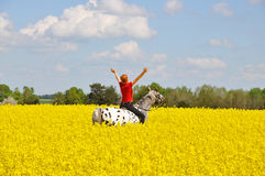 Woman and horse in rape field Stock Photo