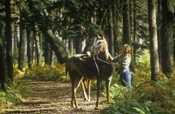 Woman with horse by the reins on trail in Autumn Stock Photo