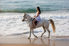 Woman horse ride beach Stock Photos