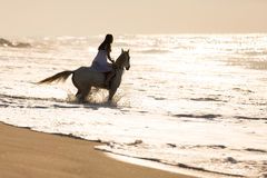 Woman horse ride beach. Young woman horse ride on the beach Royalty Free Stock Image
