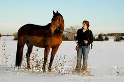 Woman and horse in Winter stock images