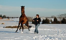 Woman and horse in Winter Royalty Free Stock Photography