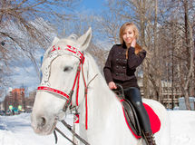 Woman with a horse in a winter park Stock Photography
