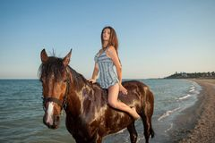 Woman on horse Stock Images