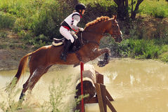 Woman horseback jumping Stock Photos