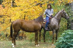 Woman on horseback leading horse, New England in Autumn Stock Photo