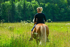 Woman horseback riding II. Woman horseback riding on field without saddle Stock Images