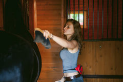 Woman horseman cleans from dirt with brush Friesian horse in stables on farm. Taking care of purebred pets stock photos