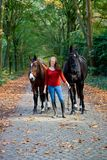 Woman horses avenue lane forrest royalty free stock photos