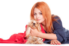 Woman hug a yorkshire terrier Royalty Free Stock Images