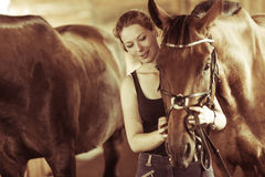 Woman hugging brown horse in stable Stock Photos