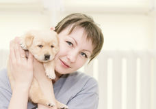 Woman hugging little  puppy Stock Photos