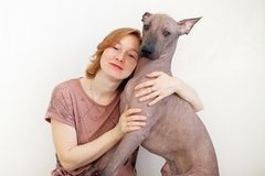 A woman hugging with a Mexican Hairless Dog. On the white background Stock Photo