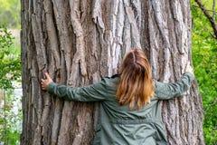 Tree hugger. Woman hugging an old oak tree in woods Stock Image