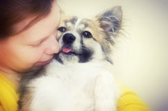 Woman hugging pet dog Stock Photography