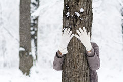 Woman hugging a tree in the winter forest .loving nature Royalty Free Stock Image