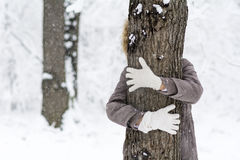 Woman hugging a tree in the winter forest .loving nature Royalty Free Stock Photo