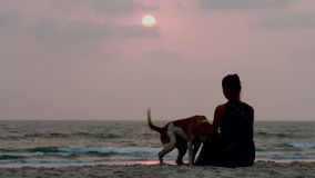Woman hugs her dog at sunset stock footage