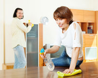 Woman with husband cleaning  at home Royalty Free Stock Photo