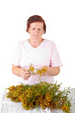 Woman with hypericum Royalty Free Stock Photo
