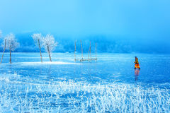 Woman on ice lake. Snowy landscape and snow covered trees and ice lake. Royalty Free Stock Photo