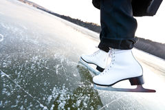 Woman ice skates with overview Royalty Free Stock Image
