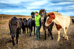 Woman with Icelandic Ponies Stock Photos