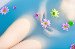 Free Woman In A Bath Royalty Free Stock Images - 13558469