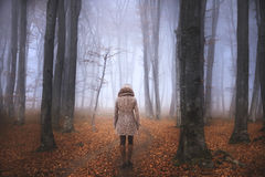 Woman In A Foggy Forest During Autumn Stock Photography
