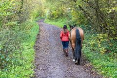 Free Woman In A Red Jacket Walking With A Horse Along A Woodland Trail Stock Image - 166075911