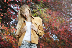 Free Woman In Autumn Park Royalty Free Stock Image - 16137416