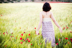Free Woman In Field Royalty Free Stock Images - 14559669