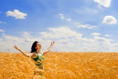 Woman In Golden Wheat Stock Image