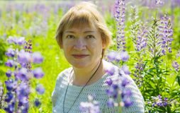 Woman In Plant Of Violet Wild Lupine Stock Images